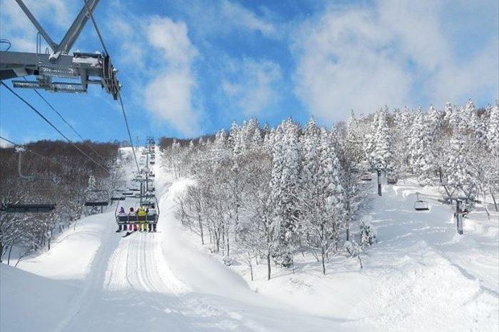 新幹線直達的滑雪場 (新潟縣)  休假前往東京觀光超方便!