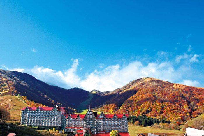 長野縣可免費使用大浴場、有晚餐吃到飽折扣等各項福利的飯店